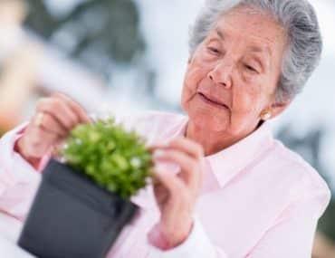 Le jardinage cultive l'intérêt du Senior
