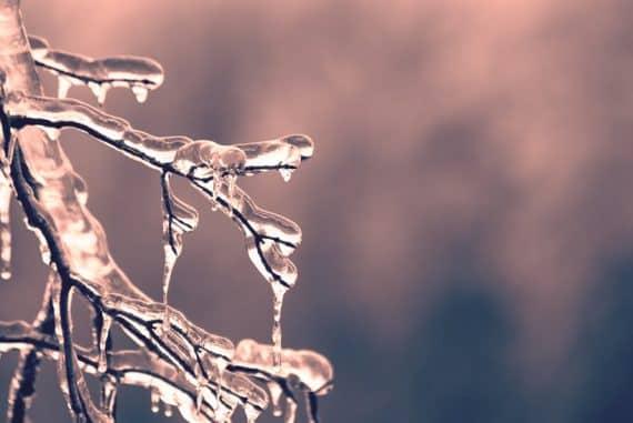 Conseils essentiels en cas de grand froid
