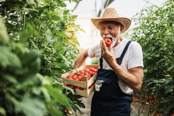 jardinage seniors